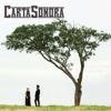 Carta Sonora - Carta Sonora