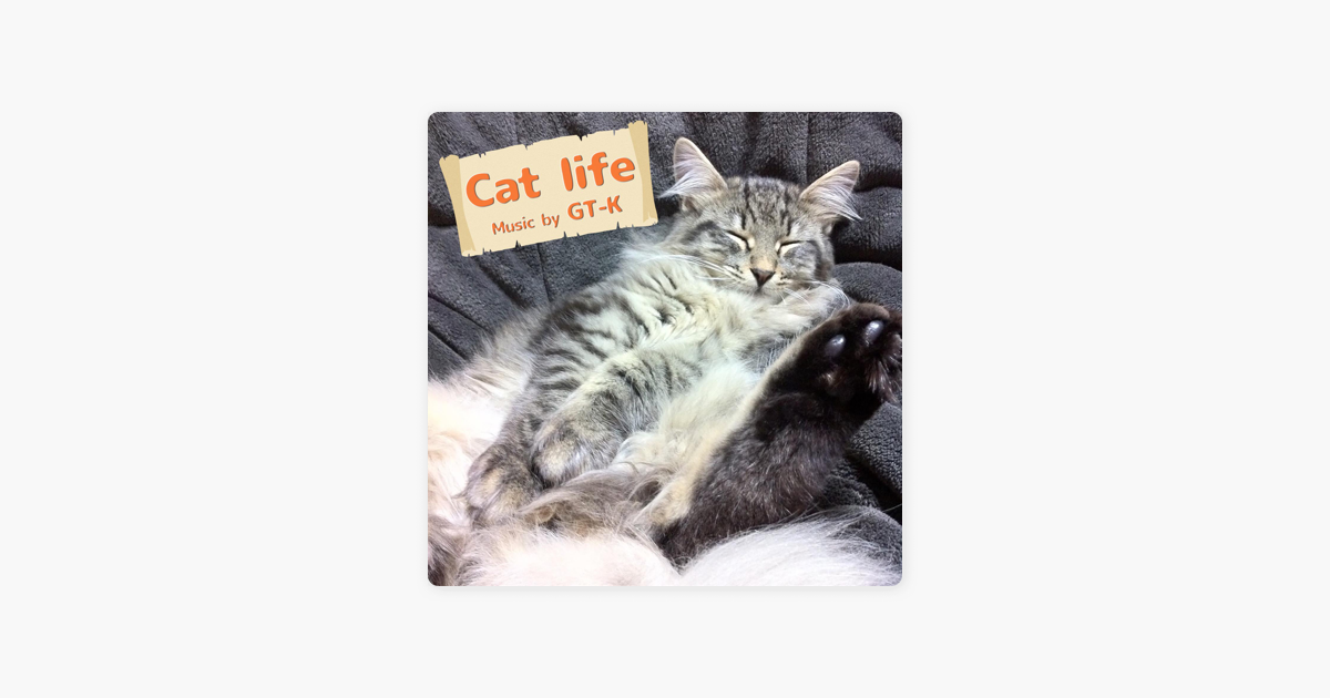 CAT:WP