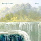 Teenage Fanclub - Live in the Moment