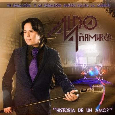 Historia de un Amor - Aldo Añamuro