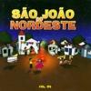 São João do Nordeste, Vol. 4 - Various Artists
