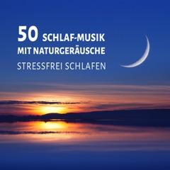 50 Schlaf-Musik mit Naturgeräusche: Reiki Heilung Musik und harmonische Schwingung für Meditation (Stressfrei Schlafen) Geistheilung, Entspannungsmusik, Instrumentalmusik & Yoga