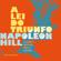 Napoleon Hill - A lei do triunfo [The Law of Success] (Unabridged)