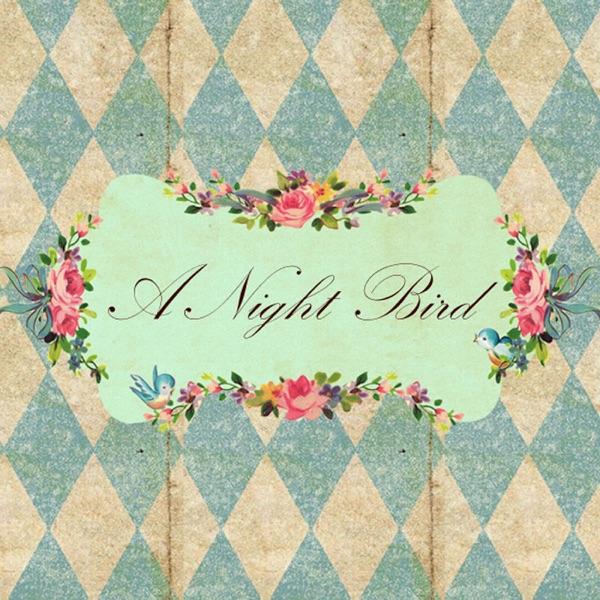 A Night Bird