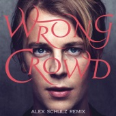 Wrong Crowd (Alex Schulz Remix) - Single