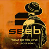 What Do You Love (feat. Jacob Banks) - Seeb