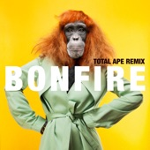 Bonfire (Total Ape Remix) - Single