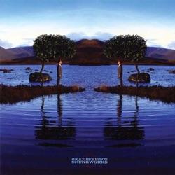 Skunkworks - Bruce Dickinson Album Cover