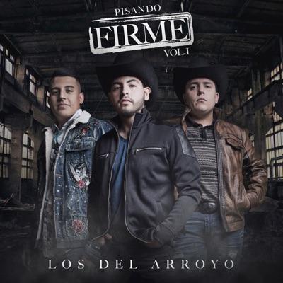 Pisando Firme, Vol. 1 - Los del Arroyo