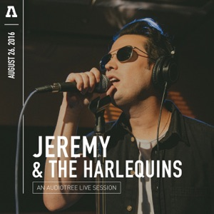 Jeremy & The Harlequins - Big Beat