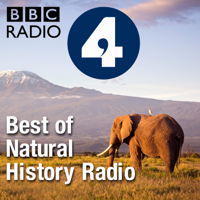 Podcast cover art for Best of Natural History Radio