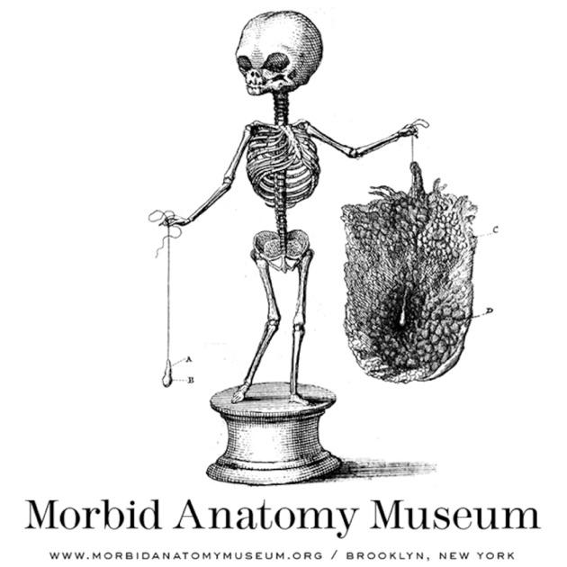 The Morbid Anatomy Transmission by Morbid Anatomy Museum on Apple ...