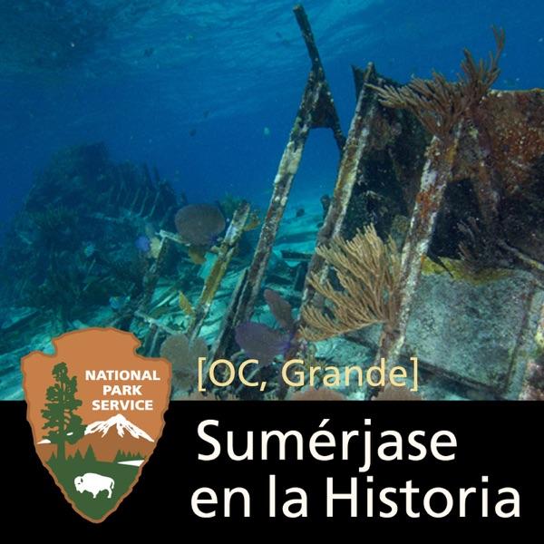 Inmersión en la Historia: Los Naufragios del Parque Nacional Biscayne [OC, Grande]