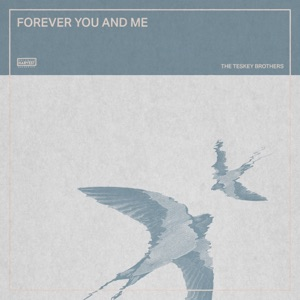 Forever You and Me - Single Mp3 Download
