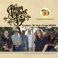 Allman Brothers Band - It's Not My Cross to Bear (Live at Murat Centre, Indianapolis, In, 7/25/2003) artwork
