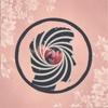 Cherry Blossom - EP - Travis Roman