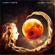 Amethyste - Alien Moon
