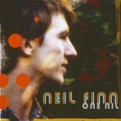 Neil Finn - Hole in the Ice