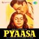 Pyaasa Original Motion Picture Soundtrack