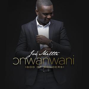 Joe Mettle - Onwanwani