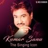 Kumar Sanu The Singing Icon Single
