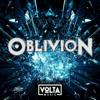 Raffael Gruber & Matthias Ullrich - Volta Music: Oblivion artwork