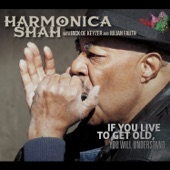 Harmonica Shah - I Just Don't Want You No More (feat. Jack de Keyzer & Julian Fauth)