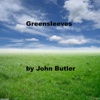Greensleeves - Single - John Butler
