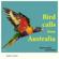 Morning Chorus of Birds - Bird Calls