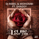 Let Me Love You (feat. Shaggy) [Radio Edit] - Single