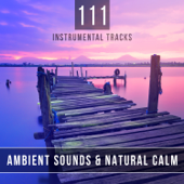 111 Instrumental Tracks: Ambient Sounds & Natural Calm - Healing Music for Deep Meditation and Reiki Therapy, Sleep Relaxing Songs for Spa Massage, Yoga
