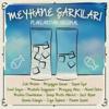 Meyhane Şarkıları (Plaklardan Orijinal) - Various Artists
