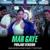 Mar Gaye Punjabi Version feat Raftaar From Beiimaan Love Single