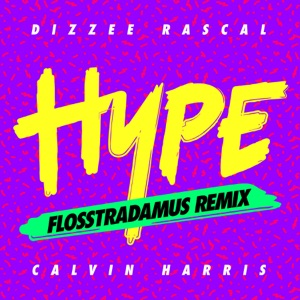 Hype (Flosstradamus Remix) - Single Mp3 Download