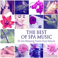 The Best of Spa Music: 50 Relaxing Tracks Pure Nature, Healing, Inner Peace, Total Relaxation, Ultimate Wellness Center Sounds, Sleep & Massage