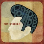 Tim O'Brien - I'm a Mess for You