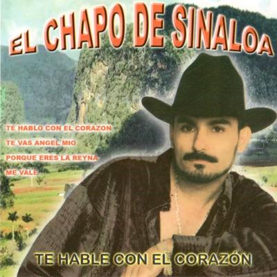 Te Hable Con El Corazón - El Chapo De Sinaloa