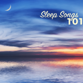 Sleep Songs - 101 Sleep Songs & Relaxation Music, Relax Sounds to Reduce Stress Level