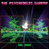 Dr. Dog - Bring My Baby Back