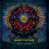 Various Artists - Ironic Cultures artwork