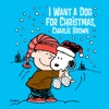 I Want a Dog for Christmas, Charlie Brown wiki, synopsis
