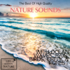 The Best of High Quality Nature Sounds With Ocean Waves, Rain, Birds, Creek & Forest - Life Sounds Nature