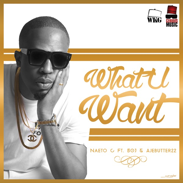 What You Want (feat. Bo-J & Ajebutter22) - Single