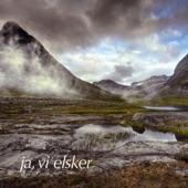 Norsk kunstnerkarneval op. 14 artwork