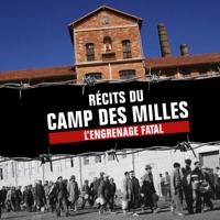 Télécharger Récits du camp des Milles, l'engrenage fatal Episode 1