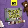 Teen Mom, Vol. 6 wiki, synopsis