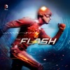 The Flash, Season 1 wiki, synopsis