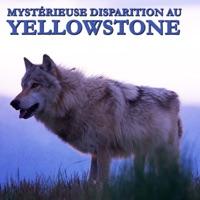 Télécharger Mystérieuse disparition au Yellowstone Episode 1