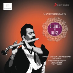 Silence Is Bliss (feat. Pandit Vishwa Mohan Bhatt)