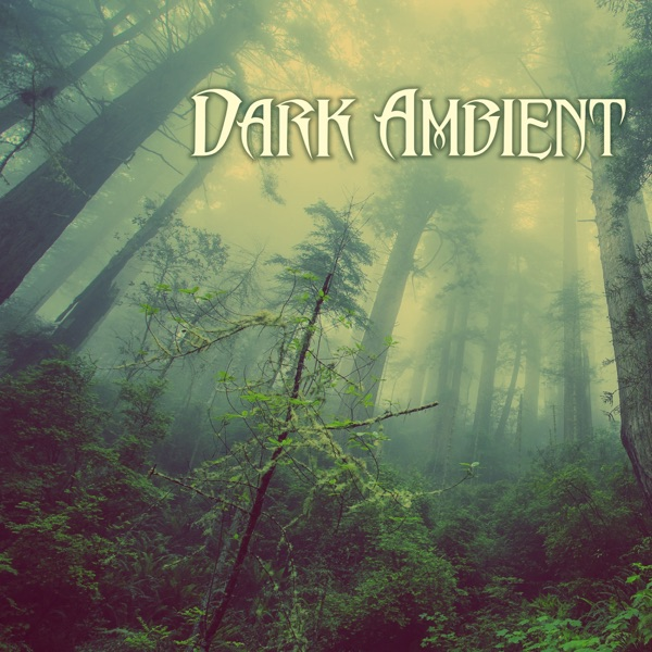 Dark Ambient Music - Nature Sounds, Creepy Soundscapes with Rain Background Sound